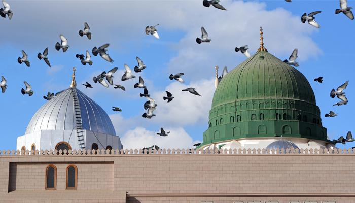 12th rabi ul awal 12 rabi ul awal 787 likes 12 rabi ul awal muslims k leay khushi ka din ya gham ka aik tahkeeki jaiza.