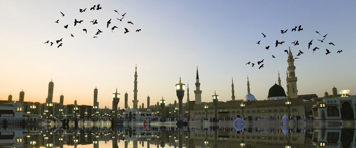 Hajj and Umrah Services Houston