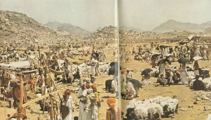 Animals in the market of Makkah during the Hajj 1953