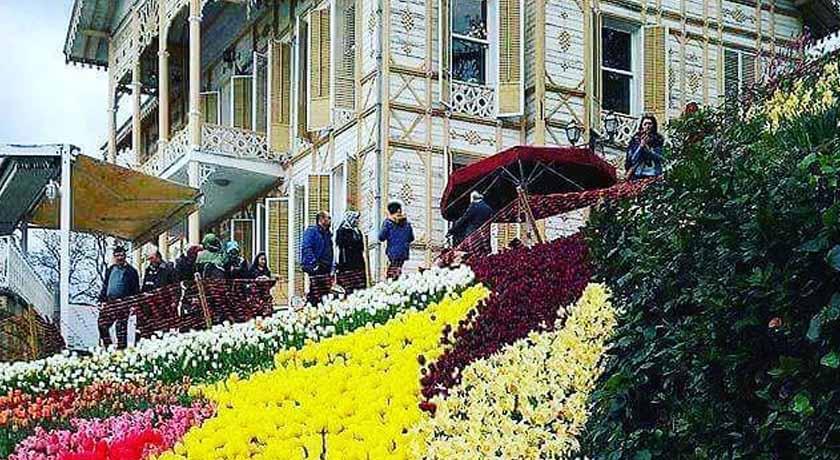 Tulip Festivals of Istanbul